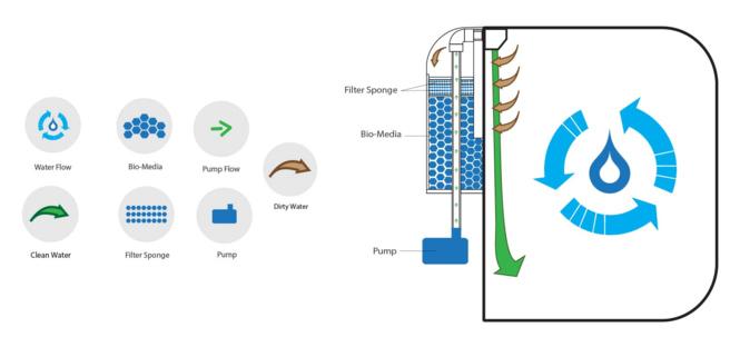 filtration pulse 80 v2