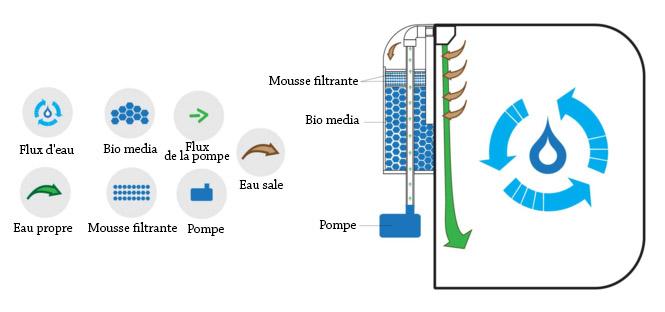 filtration pulse-fr